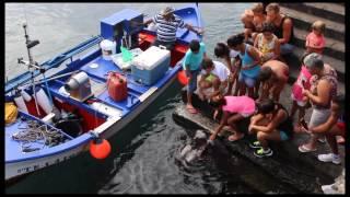 Manta, Manta y Niños 2014 - La Gomera