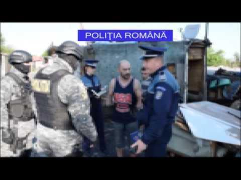 ZiarulClujean.ro - Acțiune de amploare la Pata Rât