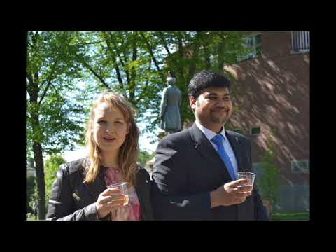 Indo Finnish wedding in Finland Tradition Part - 2