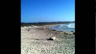 asilomar beach #1, pacific grove - pebble beach, monterey county, california