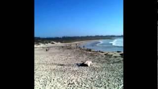 asilomar beach #1, pacific grove - pebble beach, monterey county, california