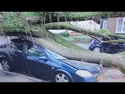 Storm Friederike hits Germany & Holland hard (footage)