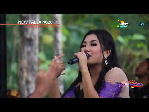 Move On - Ayu Arsita New Pallapa Ireng Community 2017