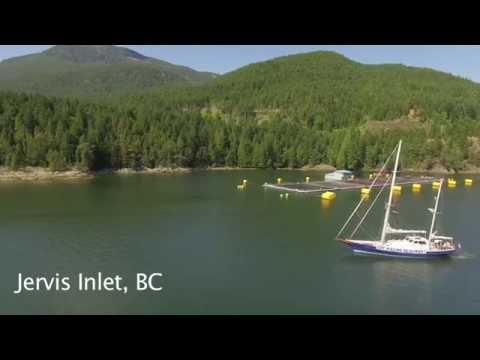 Sea Shepherd Voyage For Salmon