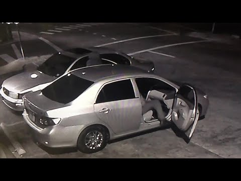 Police search for suspects in violent attack, carjacking in Tampa