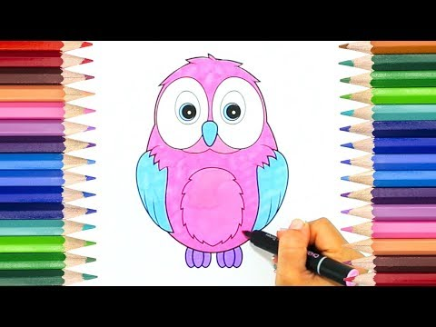 How to Draw a Cute Baby Owl   Cute Animal Coloring Page for Kids!