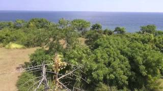 Land for sale in Lombok - Indonesia - Montong pol mango