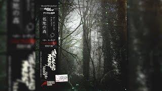 Hello Meteor - The Lowland Forest [Full Album]