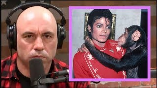 Joe Rogan on Michael Jackson