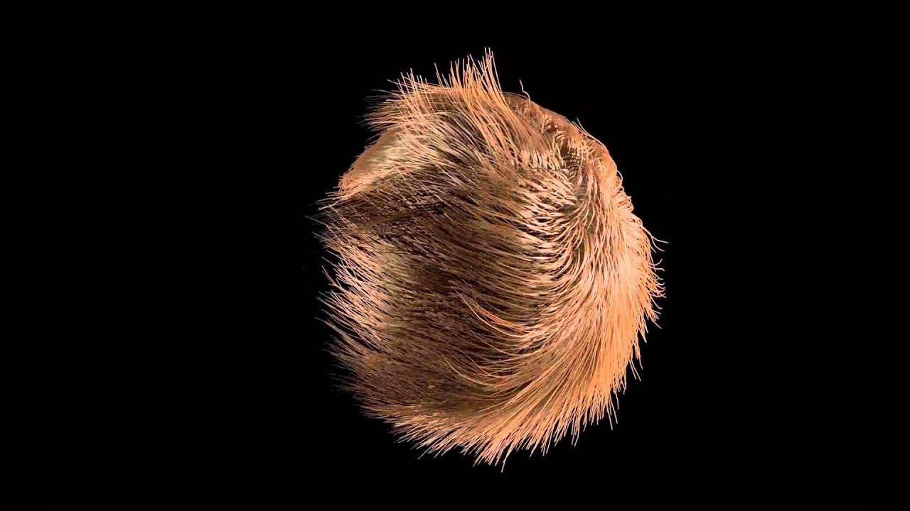 Cinema 4d multipass hair - New films on netflix 2014 uk
