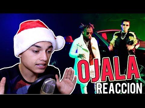 Video Reacción | Bryant Myers x De La Ghetto x Darell x Almighty - Ojala (Oficial)