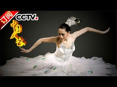 《中国文艺》 20170401 向经典致敬 本期致敬人物——傣族舞蹈家 刀美 | CCTV-4