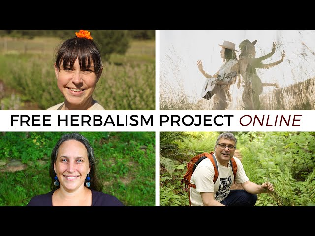 Free Herbalism Project 2020: Online Live Stream Edition