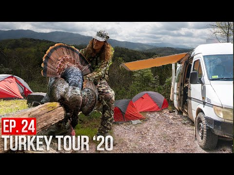 TENNESSEE PUBLIC LAND MOUNTAIN GOBBLERS! - Turkey Touring In A Van!
