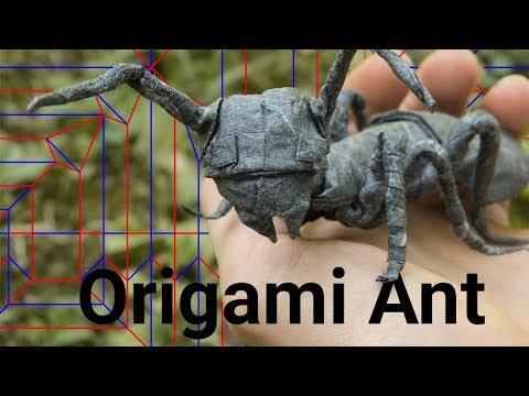Folding an Ant