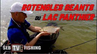 ROTENGLES GEANTS du Lac de PANTHIER