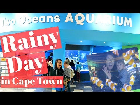 Daily Vlog: Jan. 7, 2018! Hillsong Church, Two Oceans Aquarium!