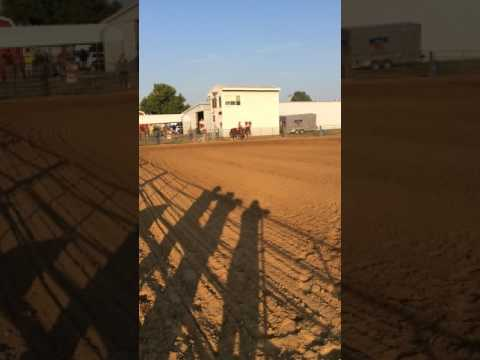 July 23, 2017 - Monroe County Fairgrounds, Waterloo IL Fair - Jocelyn & Hobo Keyhole Race