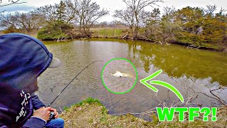 MYSTERIOUS Creature Caught While Fishing.. (DISGUSTING)
