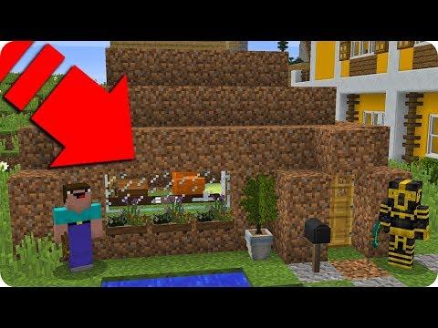 NOOB MINECRAFT VS CASA NOOB TROLL NUEVA CASA DEL NOOB EN MINECRAFT ? thumbnail