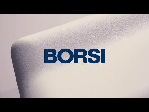 BORSI GmbH & Co. KG