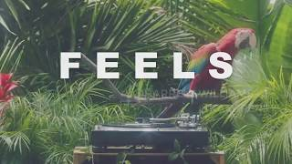 Download lagu Feels Remix with Lyrics Calvin Harris ft Pharrell Williams Katy Perry Big Sean MP3
