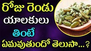 రోజు రెండు యాలుకులుతింటే ఏమవుతుందో తెలుసా | Telugu Health Tips