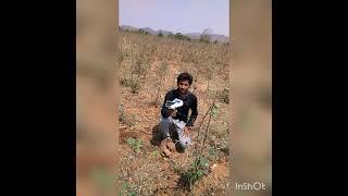 Ch. G Raju Geologist 9398271516 Khammam