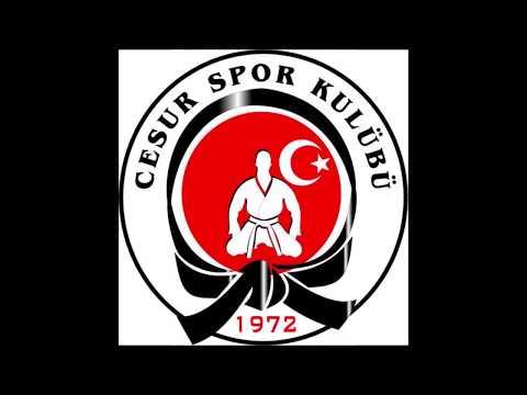 Cesur Spor Kulübü