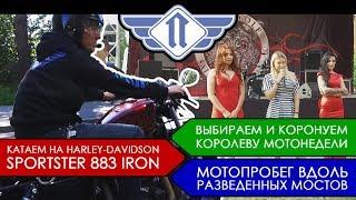 Harley-Davidson Sportsrer 883, коронуем королеву, разведённые мосты