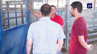إقبال ضعيف على شراء الأضاحي في الضفة الغربية (10/8/2019)