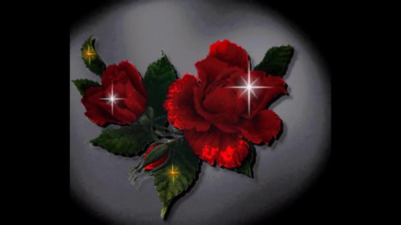 Rosas Hermosas Para Ti.