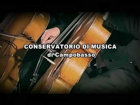 Vivo di Musica - produzioni 2007-2008