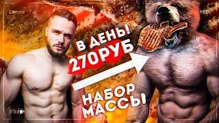 Рацион Медведя на 270 рублей в День (НАБОР МАССЫ)