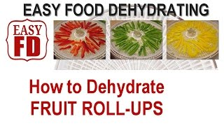 Fruit Roll Ups - How To Dehydrate