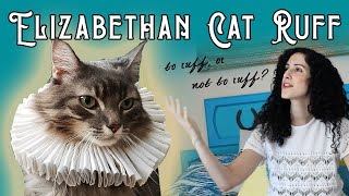 How to Make an Elizabethan Ruff (for your Cat!) | Easy Jacobean—Tudor—Shakespearian Ruff for Pets
