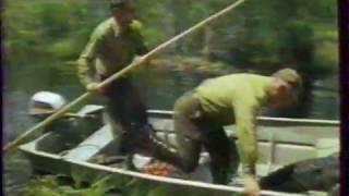 Окончание программы «Диалоги о животных» (РТР, 22.04.2001)