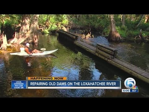 Repairing old dams on the Loxahatchee River