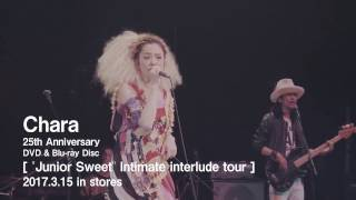 "Chara 「""Junior Sweet"" Intimate interlude tour」 トレイラー"