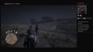 Red dead redemption 2 online hunting