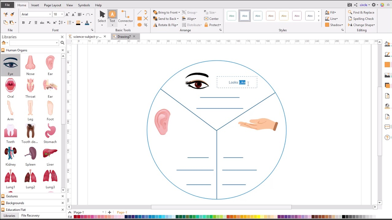 Graphic Organizer Drawing Guide Y Chart Youtube
