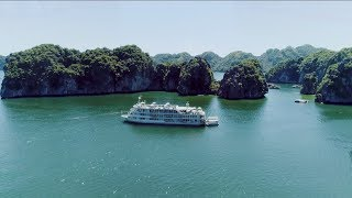 [The Au Co Luxury Cruise] The Wine by the Sea Experience