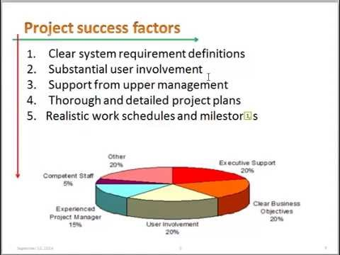The Analyst as a Project Manager ( part 1 )