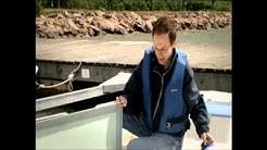 Suomi 475 Cat video 2008