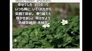 作詞:伊藤美和 作曲:原譲二 北島三郎 芸道55周年記念 「サブちゃん...
