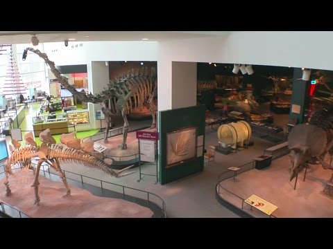 WCCO Viewers' Choice For The Best Museum In Minnesota