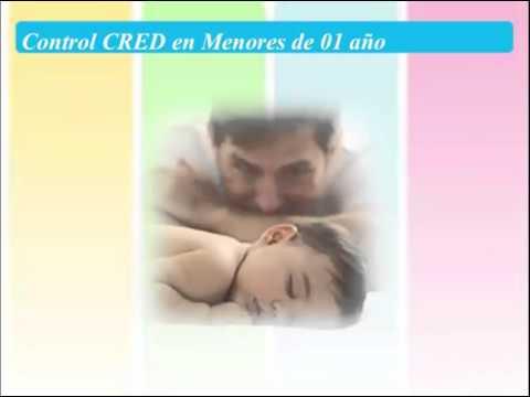 Registrar en el Formulario HISS los Controles CRED -MINSA - PERU