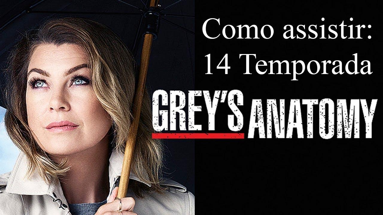 Como Assistir 14 Temporada De Greys Anatomy Pt Br Youtube