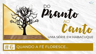 Habacuque 3.1-19 - Quando a fé floresce...