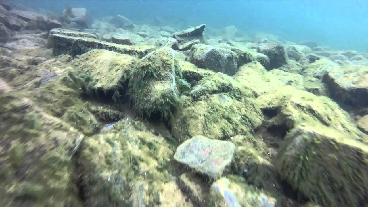 Ecole De Plongee Sous Marine Padi En Belgique
